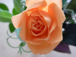 bouquet_10_04